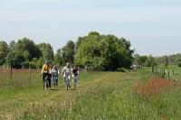 Fahrrad Moor-Tour 2010_24