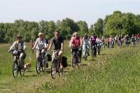 Fahrrad Moor-Tour 2010_26