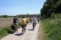 Fahrrad Moor-Tour 2010_06