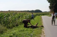 jubi-sagenweg_132
